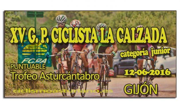 XV Gran Premio Ciclista La Calzada