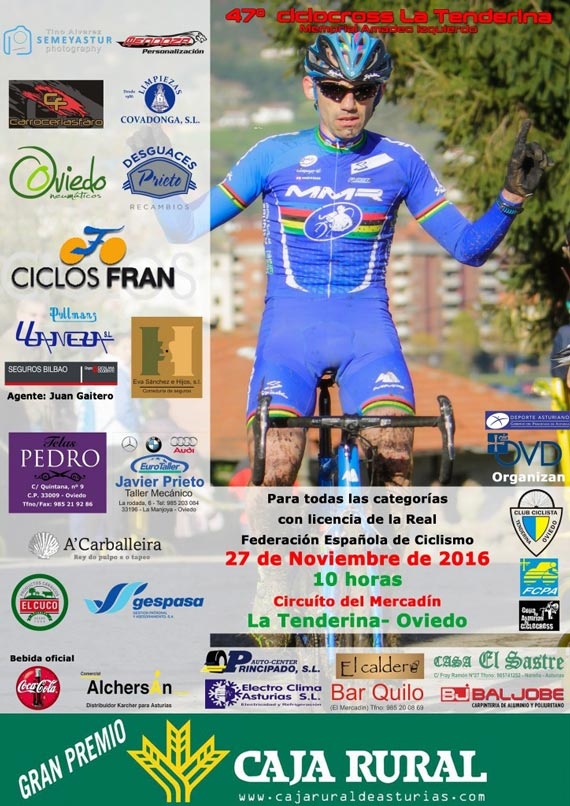 Tenderina CX2016 cartel