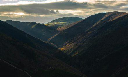 Se ha inagurado en Tineo Gravity Zone, primer Centro BTT en Asturias